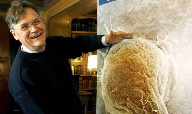 #Distractinglysexy: Notizen von Wissenschaftlerinnen verspotten Herr Tim Hunt auf Twitter mit lustigen Fotos!