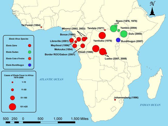 Die Geschichte des Ebola-Virus