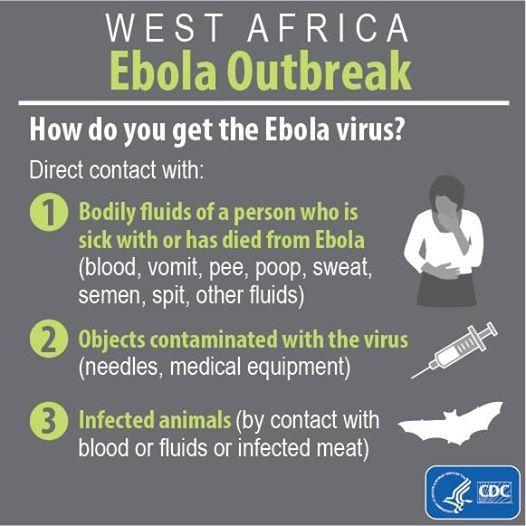 Die Übertragung von Ebola-Virus