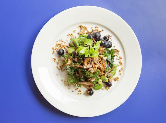 Wie Dimes wird sein Restaurant in einer Art und Weise des Lebens drehen in diesem Frühjahr