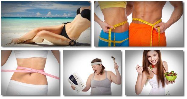 Ideal Körperprüfungssystem - kann Fitness Guide arbeiten?