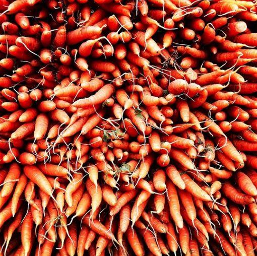 maral_arg für Gemüse fallen