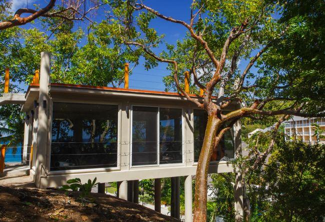 Das Spin-Studio befindet sich in einem Baumhaus