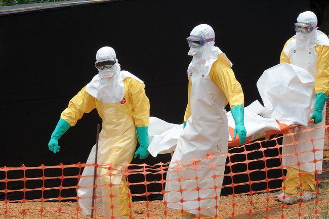 Ebola neuesten Nachrichten