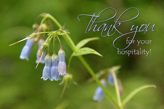 Vielen Dank für Ihre Bewertung Hospitality